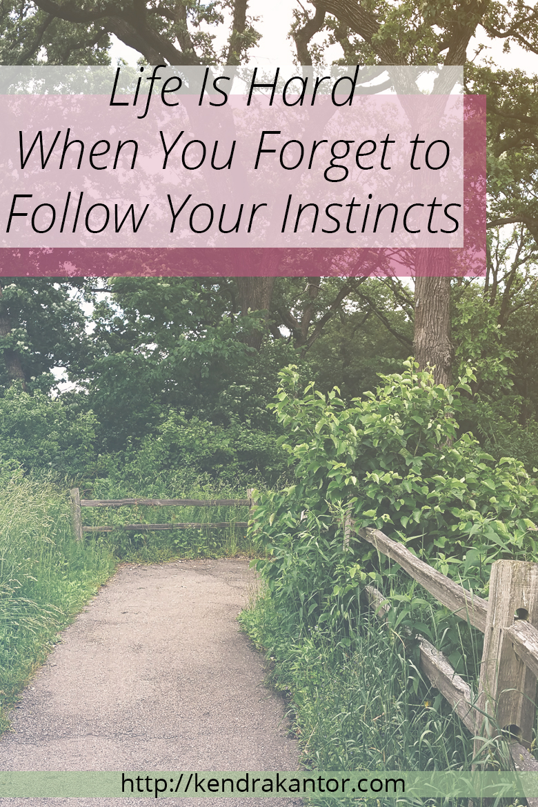 Life Is Hard When You Forget to Follow Your Instincts by Kendra Kantor | http://kendrakantor.com